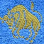 výšivka znamení zvěrokruhu horoskop